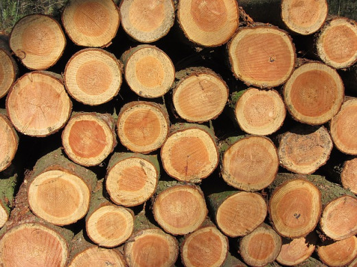 e837b20929fc053ecd0b470de7444e90fe76e6d31eb3164397f2c1_640_firewood